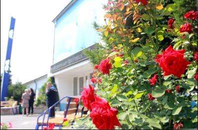 Сценарий 50-летнего юбилея женщины - сценарий 50-летнего юбилея женщины - сценарий 50-летнего юбилея лилии мой прекрасный сад